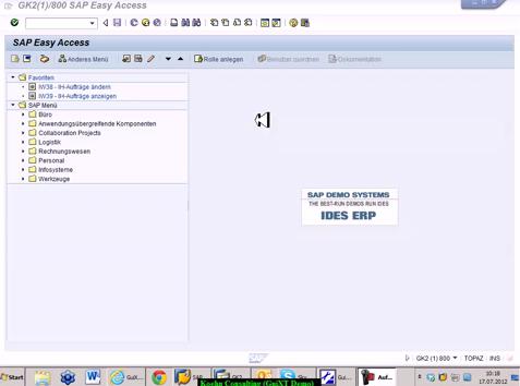 SAP ERP effizienter machen